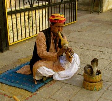 7354266-Jaipur-Amber-Fort-Snake-Charmer-0